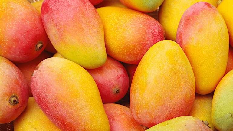 Mangó ― egy kis egzotika minden nap